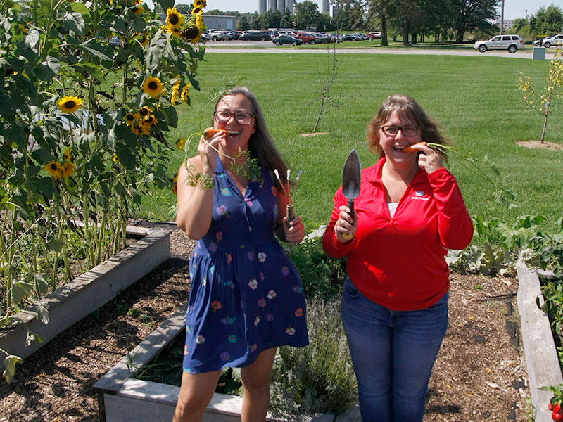 Wightman gardening